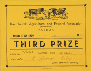 1.1 Third Prize Annual Stock Show 4 December 1954 Mature Cow in Milk, The Hauraki Agricultural and Pastoral Association