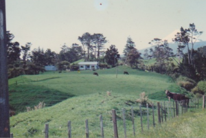 1.1 The farm at New Plymouth, New Zealand